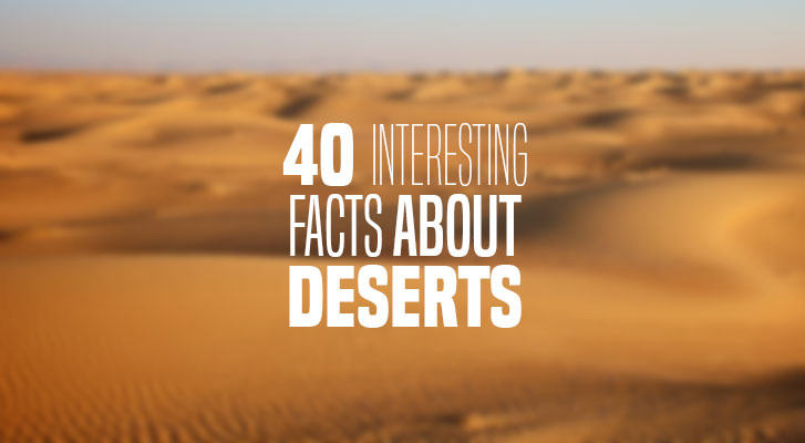 Facts About the Desert